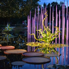 chihuly small
